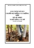 Giáo trình Chuẩn bị trồng và trồng mới - MĐ03: Trồng cây bơ