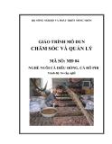Giáo trình Chăm sóc và quản lý - MĐ04: Nuôi cá diêu hồng, cá rô phi
