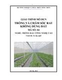 Giáo trình Trồng và chăm sóc rau không dùng đất - MĐ04: Trồng rau công nghệ cao