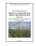 Giáo trình Trồng rau trong môi trường đất - MĐ03: Trồng rau công nghệ cao