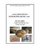 Giáo trình Nuôi dưỡng hươu, nai - MĐ04: Nuôi hươu, nai