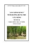 Giáo trình Nuôi dưỡng rừng tre lấy măng - MĐ04: Trồng tre lấy măng