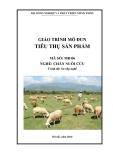 Giáo trình Tiêu thụ sản phẩm - MĐ06: Chăn nuôi cừu