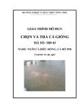 Giáo trình Chọn và thả cá giống - MĐ03: Nuôi cá diêu hồng, cá rô phi