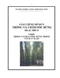 Giáo trình Trồng và chăm sóc rừng - MĐ01: Trồng và khai thác rừng trồng