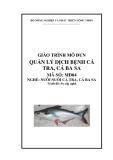 Giáo trình Quản lý dịch bệnh cá tra, cá ba sa - MĐ04: Nuôi cá tra, cá ba sa
