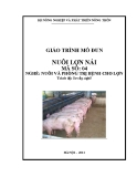 Giáo trình Nuôi lợn nái - MĐ04: Nuôi và phòng trị bệnh cho lợn