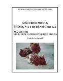 Giáo trình Phòng và trị bệnh cho gà - MĐ04: Nuôi và phòng trị bệnh cho gà