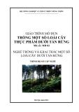 Giáo trình Trồng một số loài cây thực phẩm dưới tán rừng - MĐ02: Trồng và khai thác một số loài cây dưới tán rừng