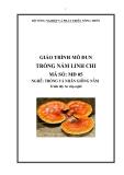 Giáo trình Trồng nấm linh chi - MĐ05: Trồng và nhân giống nấm
