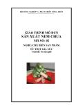 Giáo trình Sản xuất nem chua - MĐ02: Chế biến các sản phẩm từ thịt gia súc