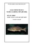 Giáo trình Nuôi cá hồng mỹ (đù đỏ) - MĐ03: Nuôi cá lồng bè trên biển
