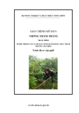 Giáo trình Trồng trám trắng - MĐ03: Trồng cây lâm sản ngoài gỗ song, mây trám trăng táo mèo