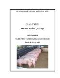 Giáo trình Nuôi lợn thịt - MĐ05: Nuôi và phòng trị bệnh cho lợn