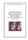 Giáo trình Trồng nấm mộc nhĩ - MĐ04: Trồng và nhân giống nấm
