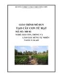 Giáo trình Tạo cây con từ hạt - MĐ02: Bảo tồn, trồng và làm giàu rừng tự nhiên