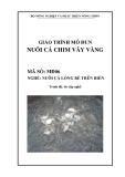 Giáo trình Nuôi cá chim vây vàng - MĐ06: Nuôi cá lồng bè trên biển