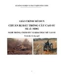 Giáo trình Chuẩn bị đất trồng cây cao su - MĐ02: Trồng, chăm sóc và khai thác mủ cao su