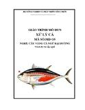 Giáo trình Xử lý cá - MĐ05: Câu vàng cá ngừ đại dương