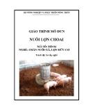 Giáo trình Nuôi lợn choai - MĐ04: Chăn nuôi gà, lợn hữu cơ