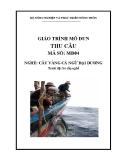 Giáo trình Thu câu - MĐ04: Câu vàng cá ngừ đại dương