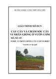 Giáo trình Cấy cây và chăm sóc cây vi nhân giống ở vườn ươm - MĐ05: Vi nhân giống cây lâm nghiệp