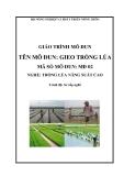 Giáo trình Gieo trồng lúa - MĐ02: Trồng lúa năng suất cao