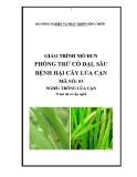 Giáo trình Phòng trừ cỏ dại, sâu bệnh hại cây lúa cạn - MĐ03: Trồng lúa cạn