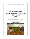 Giáo trình Sản xuất cây giống bằng hom cành - MĐ03: Sản xuất kinh doanh cây giống lâm nghiệp