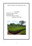 Giáo trình Tiêu thụ cây giống - MĐ05: Nhân giống cây ăn quả