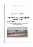 Giáo trình Chuẩn bị nơi ương giống và nuôi ngao - MĐ02: Ương giống và nuôi ngao