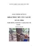 Giáo trình Khai thác mủ cây cao su - MĐ04: Trồng, chăm sóc và khai thác mủ cao su