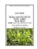 Giáo trình Tạo cây con từ giâm, chiết - MĐ03: Bảo tồn, trồng và làm giàu rừng tự nhiên