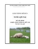 Giáo trình Nuôi lợn nái - MĐ06: Chăn nuôi gà, lợn hữu cơ