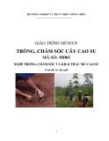Giáo trình Trồng, chăm sóc cây cao su - MĐ03: Trồng, chăm sóc và khai thác mủ cao su