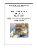 Giáo trình Thả câu - MĐ03: Câu vàng cá ngừ đại dương