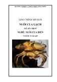 Giáo trình Nuôi cua gạch - MĐ07: Nuôi cua biển