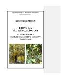 Giáo trình Trồng cây sầu riêng, măng cụt - MĐ03: Trồng sầu riêng, măng cụt