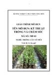 Giáo trình Kỹ thuật trồng và chăm sóc - MĐ03: Trồng cây có múi