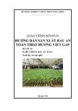 Giáo trình Hướng dẫn sản xuất rau an toàn theo hướng Viet GAP - MĐ01: Trồng rau an toàn