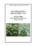 Giáo trình Bảo vệ thực vật - MĐ05: Trồng cây bông vải