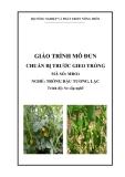 Giáo trình Chuẩn bị trước gieo trồng - MĐ01: Trồng đậu tương, lạc