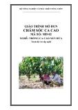 Giáo trình Chăm sóc ca cao - MĐ02: Trồng ca cao xen dừa