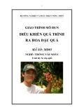 Giáo trình Điều khiển quá trình ra hoa đậu quả - MĐ05: Trồng vải, nhãn