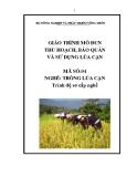 Giáo trình Thu hoạch, bảo quản và sử dụng lúa cạn - MĐ04: Trồng lúa cạn