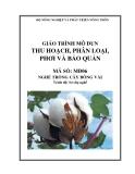 Giáo trình Thu hoạch, phân loại, phơi và bảo quản - MĐ06: Trồng cây bông vải