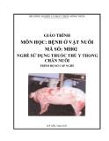 Giáo trình Bệnh ở vật nuôi - MĐ02: Sử dụng thuốc thú y trong chăn nuôi