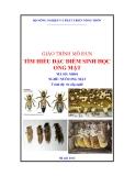 Giáo trình Tìm hiểu đặc điểm sinh học ong mật - MĐ01: Nuôi ong mật