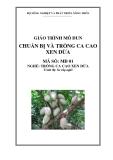 Giáo trình Chuẩn bị và trồng ca cao xen dừa - MĐ01: Trồng ca cao xen dừa