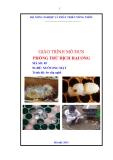 Giáo trình Phòng trừ dịch hại ong - MĐ05: Nuôi ong mật